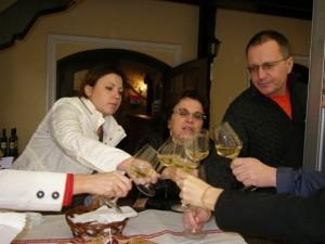 Plesivica hills - Wine Tasting