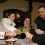 Plesivica hills - Wine-tasting in boutique winery