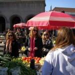 Zagreb Gourmet Tour - farmer market