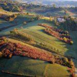 Plesivica hills wine region